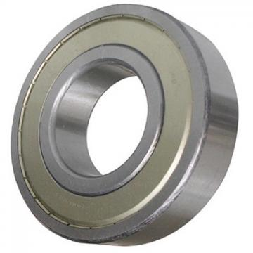 SKF Rolling Bearing 6310-2RS Deep Groove Ball Bearing