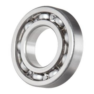 SKF Cylindrical Roller Bearing Nup202/203/204/205/206/207/208/209/210/211/212/213/214/215